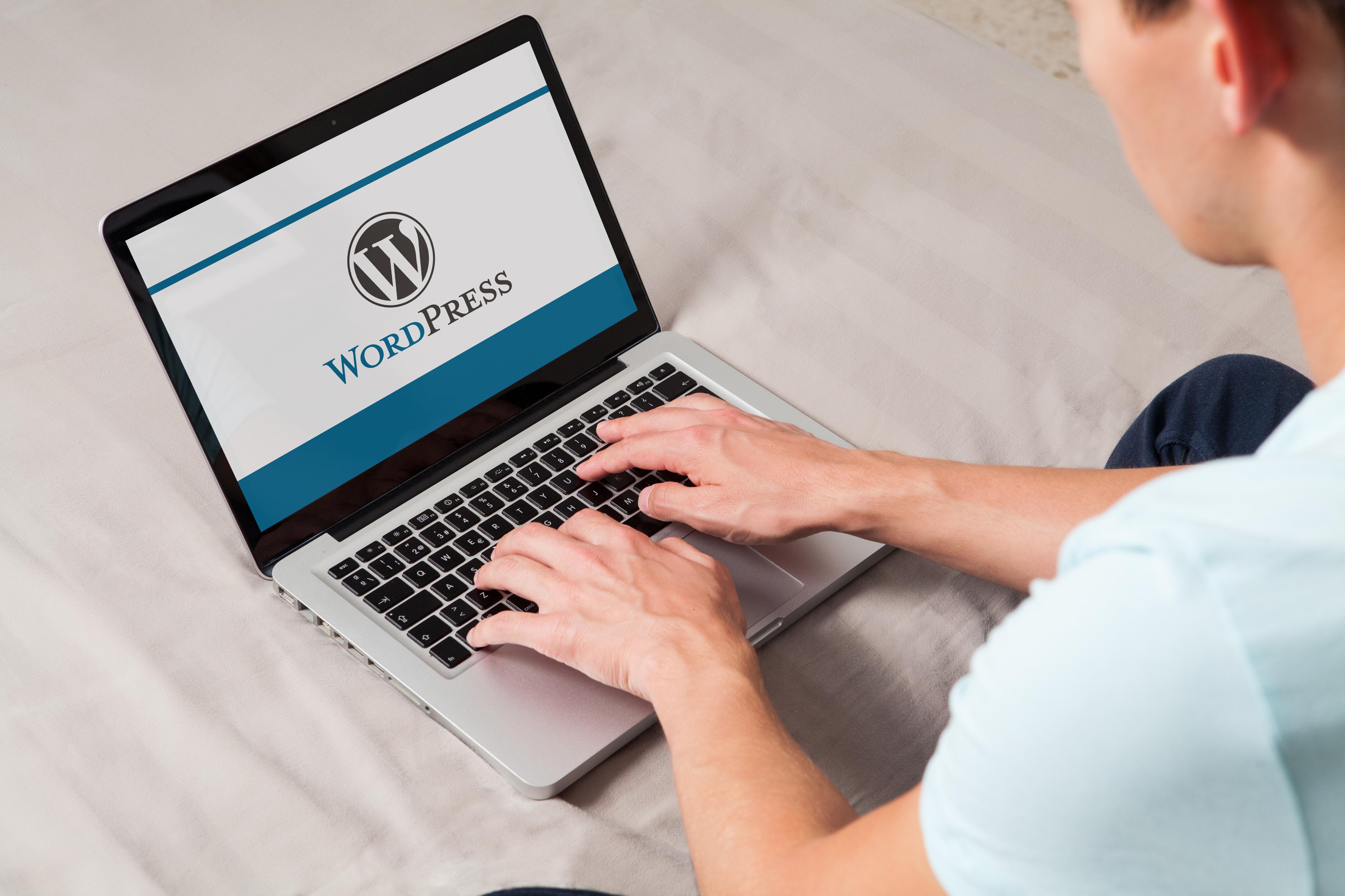 WordPress Entwicklung